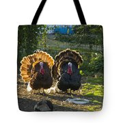 Bill And George Tote Bag