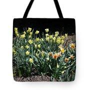 Biltmore Daffodils Tote Bag