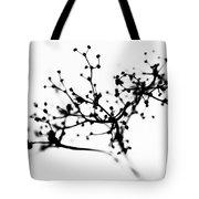 Biochemistry Of Winter 1 Tote Bag