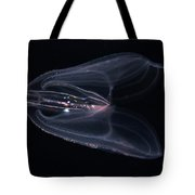 Biolumiescent Comb Jelly Tote Bag