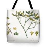 Birch And Mistletoe Tote Bag