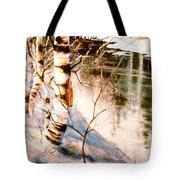 Birch By Stream Tote Bag