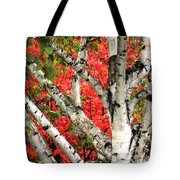 Birch Eclipsing Maple Tote Bag