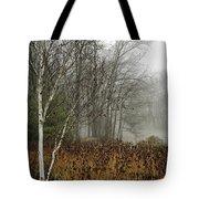 Birch In Winter Tote Bag