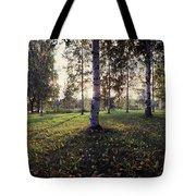 Birch Trees, Imatra, Finland Tote Bag