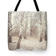 Birch Trees In The Snow. Winter Poems Tote Bag