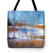 Birches And Cattails Tote Bag