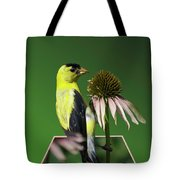 Bird Eating Seeds Tote Bag