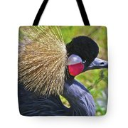 Bird Exotica  Tote Bag