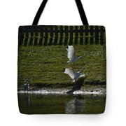 Bird Fight Tote Bag
