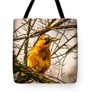 Bird Holding Food In Mouth Tote Bag