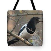Bird Magpie Tote Bag
