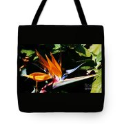 Grotto Bay Bird Of Paradise # 1 Tote Bag