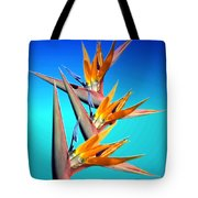 Bird Of Paradise 2013 Tote Bag
