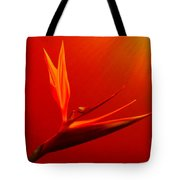 Bird Of Paradise - Flora - Flower Tote Bag