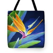 Bird Of Paradise Tote Bag by Stephen Anderson