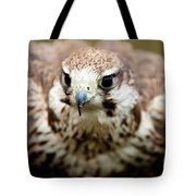Bird Of Prey Flying Tote Bag