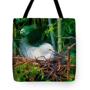 Bird On A Nest Tote Bag