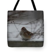 Bird Sitting In Snow  Tote Bag