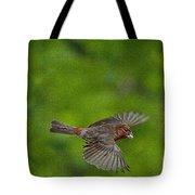 Bird Soaring With Food In Beak Tote Bag