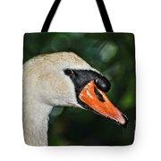 Bird - Swan - Mute Swan Close Up Tote Bag