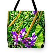 Bird Vetch On Bow River Trail In Banff National Park-alberta  Tote Bag