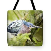 Bird Whirl2 Tote Bag