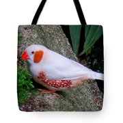 Male Zebra Finch Tote Bag