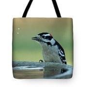 Birdbath Funtime Tote Bag