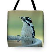 Birdbath Tote Bag