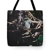 Birdie Sitting In The Tree Tote Bag