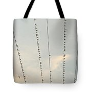 Birds And Wires Two Tote Bag