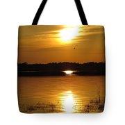 Birds At Sunset Tote Bag