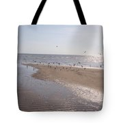 Birds At The Beach At Low Tide Tote Bag