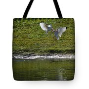 Birds In Fight Tote Bag