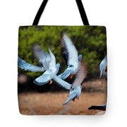 Birds In Flight 030515aa Tote Bag
