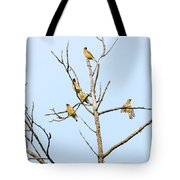 Birds Of A Feather  - Waxwings Tote Bag