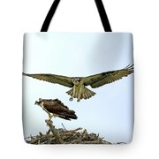 Birds Of Prey Tote Bag