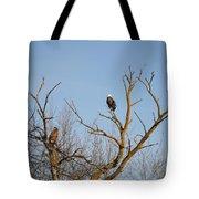 Birds Of Prey II Tote Bag