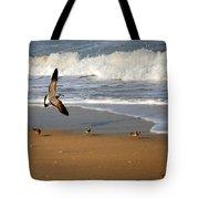 Birds On The Beach Tote Bag