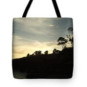 Birds Over Cliff Tote Bag