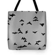 Birds That Knew Tote Bag