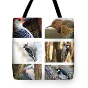 Birds - Woodpeckers - Boxed Cards Tote Bag