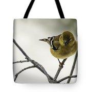 Birdy Birdy Goldfinch Tote Bag