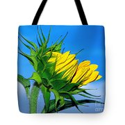 Birth Of A Sunflower By Kaye Menner Tote Bag