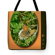 Birthday Greeting Card - American Copper Butterfly Tote Bag