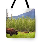 Bison Along Alaska Highway In British Columbia-canada Tote Bag