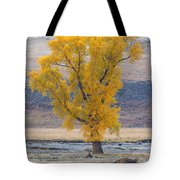Bison And Cottonwood Tote Bag