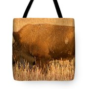 Bison At The Elk Ranch In Grand Teton National Park Tote Bag