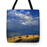 Bison Back From The Brink Tote Bag